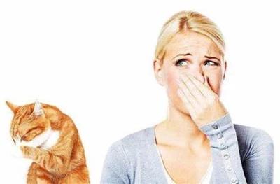 запах животных