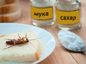 рецепт от тараканов