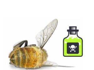 отравление у пчел