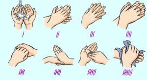 картинка моем руки правильно