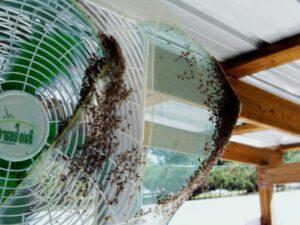 ловушка от комаров с вентилятором